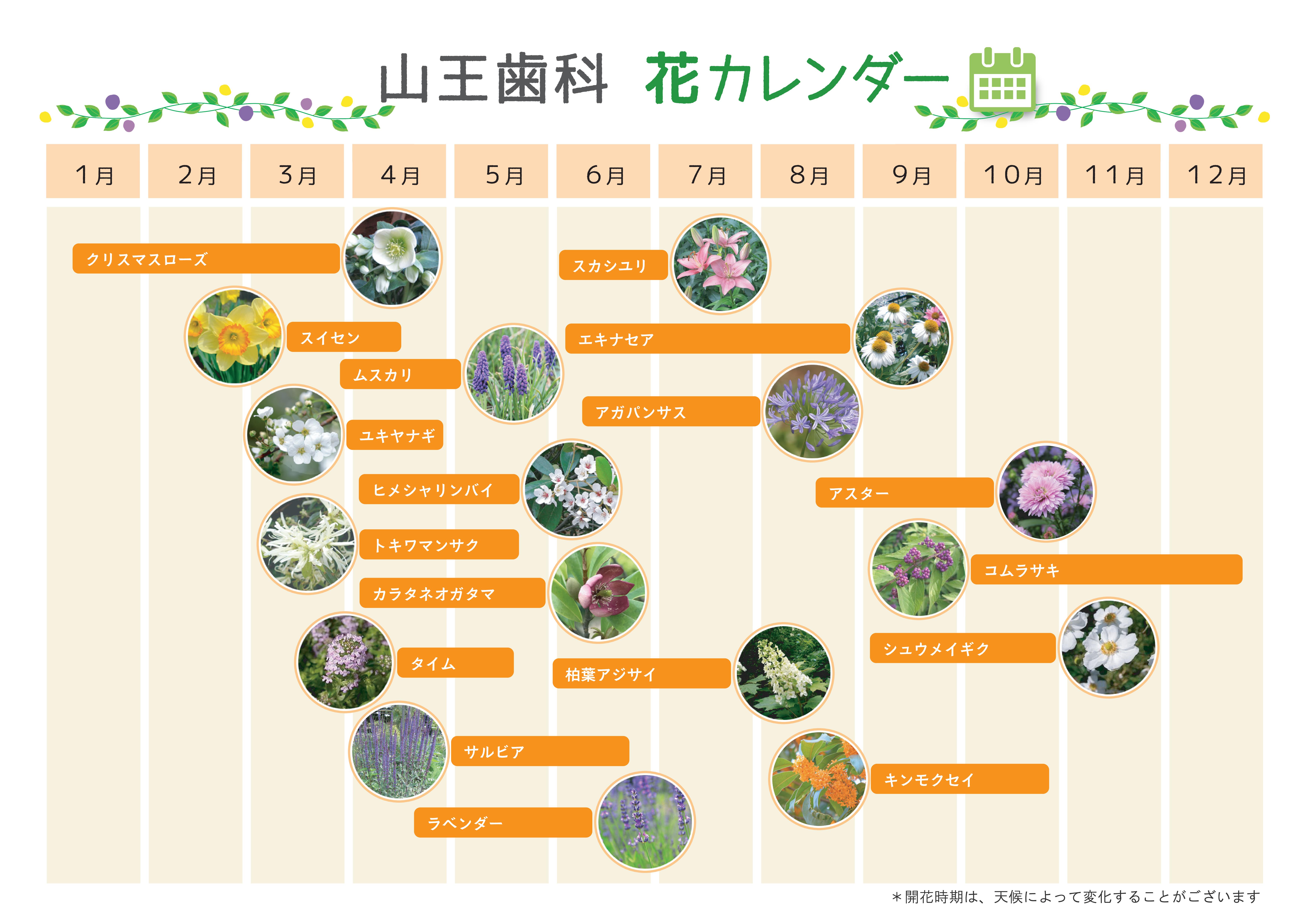花カレンダー (1)